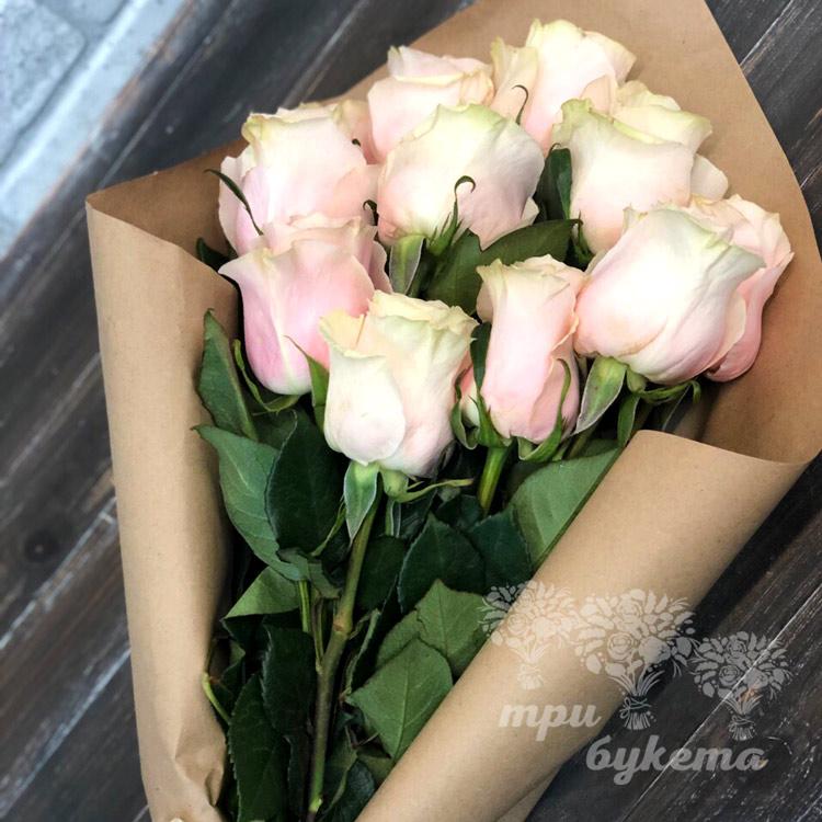 11 роз (приближенный вид)