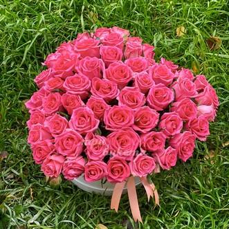 51 роза сердцем