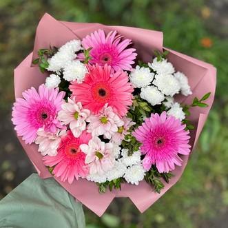 5 розовых гербер