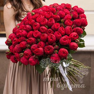 101 пионовидная роза 60 см.