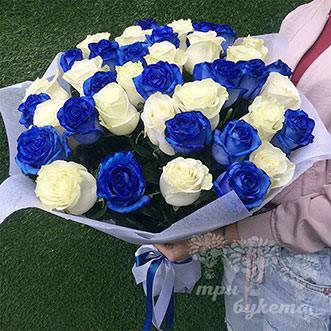 Букет из 37 синих и белых роз
