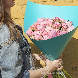 Розовые пионы Сара Бернар Premium 35 шт.