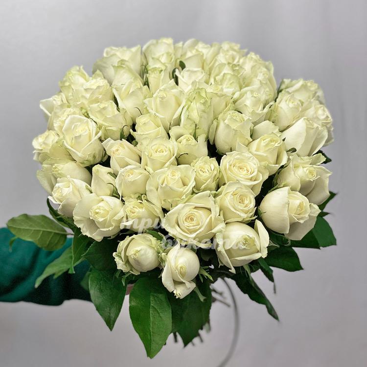 Букет из 51 белой розы (на белом фоне)