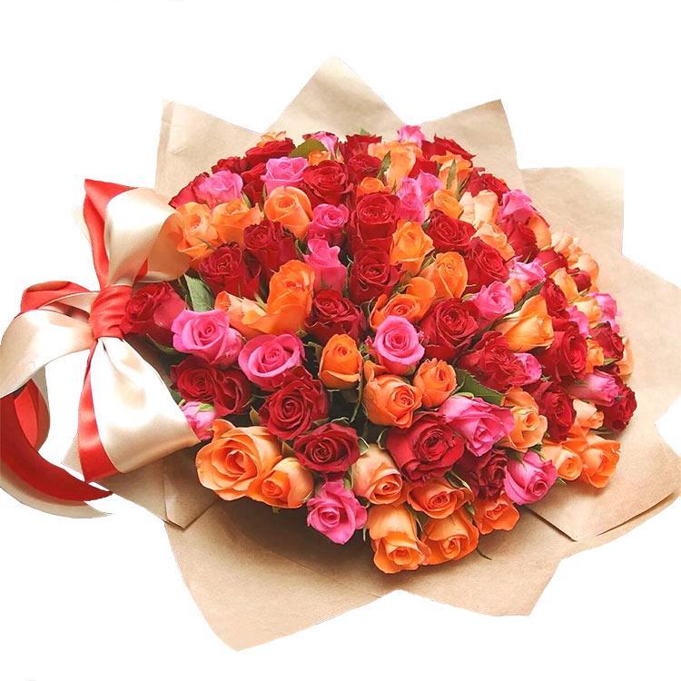 101 кенийская роза (на белом фоне)