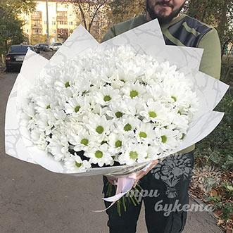 Букет из 25 кустовых хризантем фото