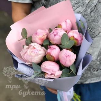 Букет из 8 розовых пионов фото