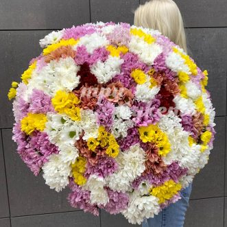 Букет из 81 хризантемы